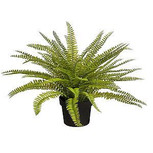 d60ec96d3 Importadores de plantas y flores artificiales | Venta al por mayor